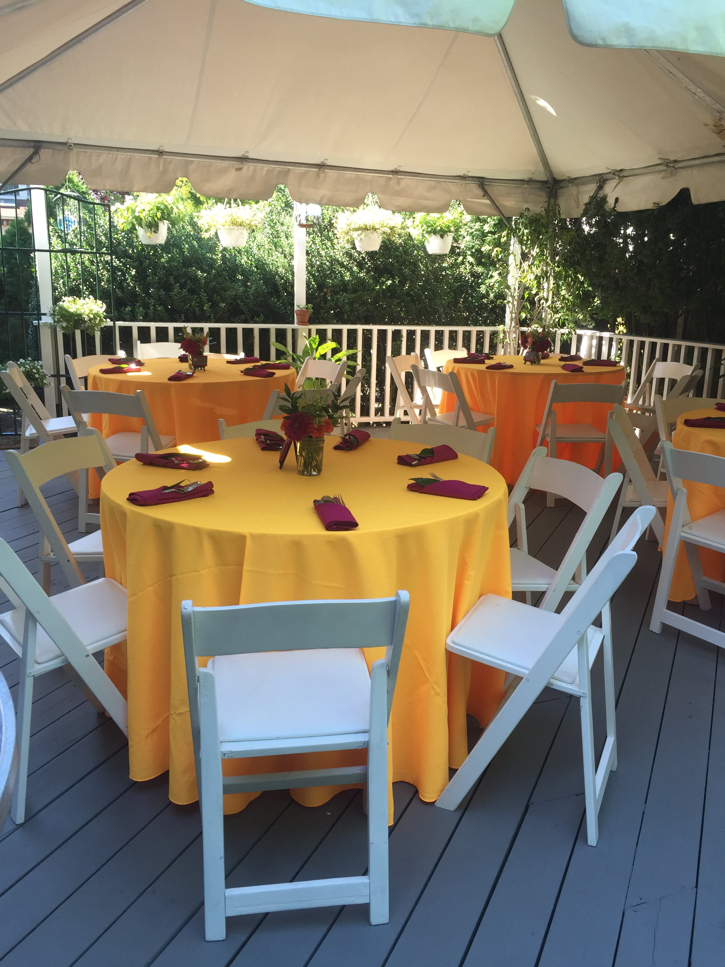 Pictures Of Recent Events Aaa Party Rentals